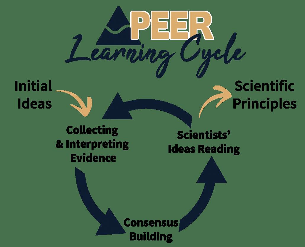 PEER Learning Cycle